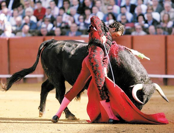 Finito de Córdoba: Contará con un cartucho