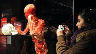 Los visitantes fotografían las obras para llevarse el recuerdo de la exposición.  Foto: Juan Carlos Vazquez