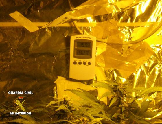 Tanto la temperatura como la humedad eran cuidadosamente controladas. / Guardia Civil  Foto: Granadahoy.com