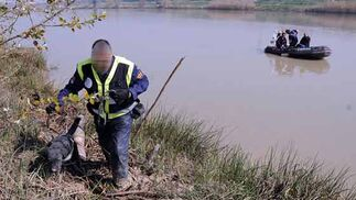 Los perros de la Guardia Civil, que participan en la búsqueda, reastrean todos los rincones de los alrededores del río  Foto: Juan Carlos Vazquez/Victoria Hidalgo/Jose Angel Garcia
