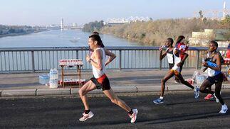 Corredores del XXV Maratón Ciudad de Sevilla al paso por el Puente de la Barqueta, aún en los primeros kilómetros de la prueba.  Foto: Juan Carlos Vázquez