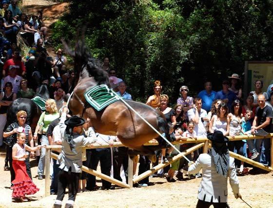 El evento organizado en el parque de Las Canteras por El Rancho El Toreo protagonizó la penúltima jornada ferial  Foto: Javier Gonzalez