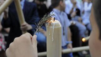 El romero es un símbolo del Corpus Christi.  Foto: Juan Carlos Váquez