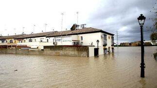El Río Guadalquivir se desborda a su paso por Lora del Río.  Foto: Eduardo Abad (EFE)