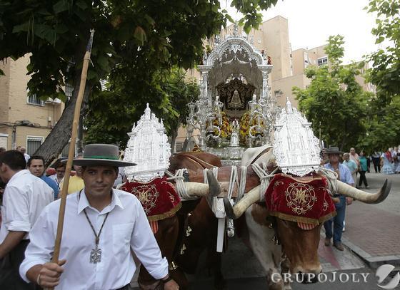 El simpecado de la Hermandad de Sevilla Sur tirado por bueyes.  Foto: José Ángel García