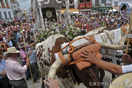 La Hermandad del Rocío de Los Palacios en el tradicional paso por Villamanrique.  Foto: Juan Carlos Vázquez