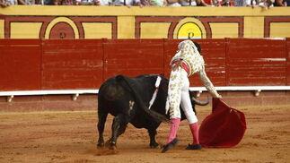 Talavante, Vega y Padilla, buenas faenas en Las Palomas.  Foto: Erasmo Fenoy