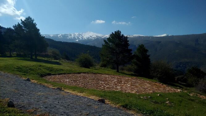 Temporada alta en hoya de pedraza for El jardin pedraza