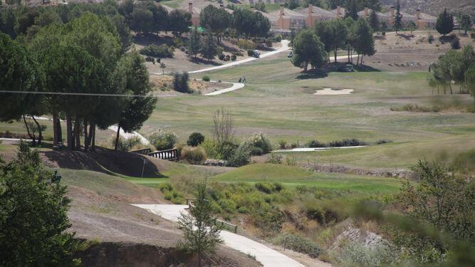 La empresa que gestiona el Santa Clara Golf Club de Otura podrá emplear medidas de caza en sus instalaciones para paliar esta situación.
