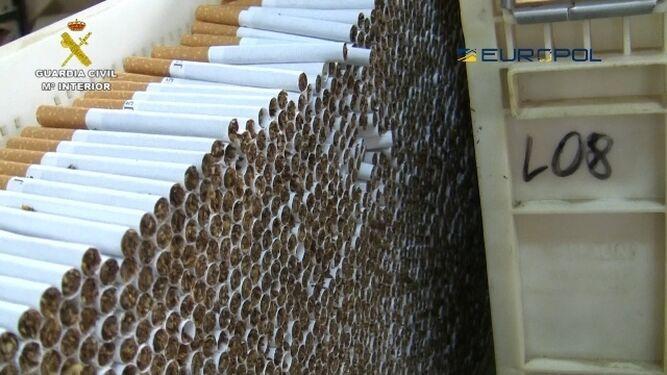 En la fábrica desmantelada se realizaba todo el proceso de elaboración del tabaco y su distribución.