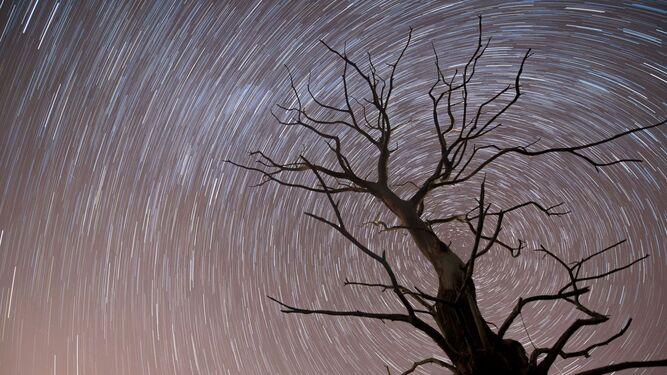 El 13 y 14 de diciembre se verá la última lluvia de estrellas del año con más de 120 meteoros de colores en una hora.