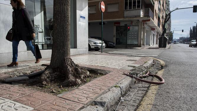 Nuevo eje palencia  arabial La ciudad se mete en obras