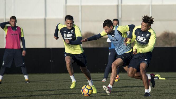 Varios jugadores del Granada, a pleno rendimiento durante un entrenamiento.