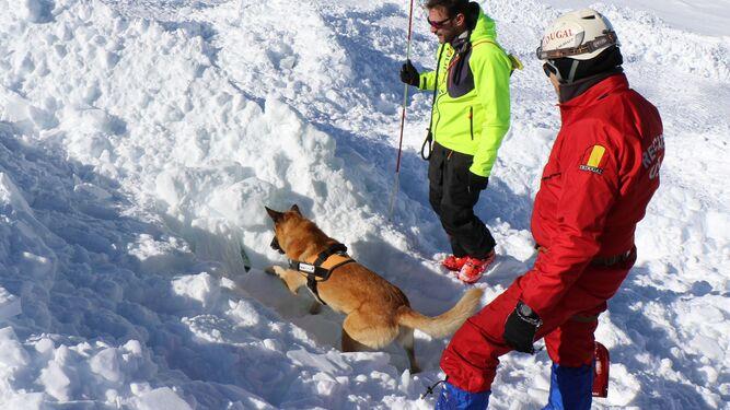 'Salvavidas' que dejan huella en la nieve
