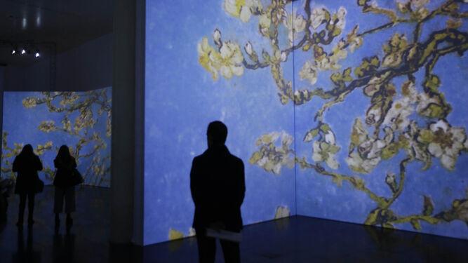 'Van Gogh Alive'El retrato de un genio