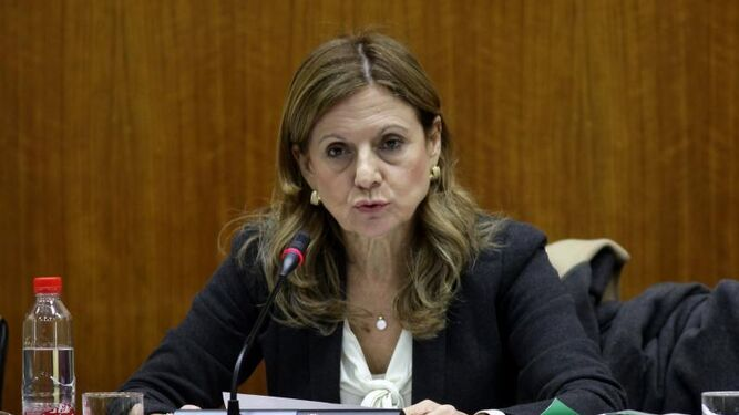 La consejera de Salud, en su intervención en el Parlamento andaluz.