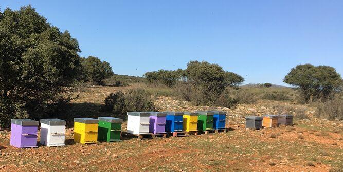 Enrique Fernández mantiene la tradición familiar de sus propias colmenas en parajes naturales de la Alpujarra