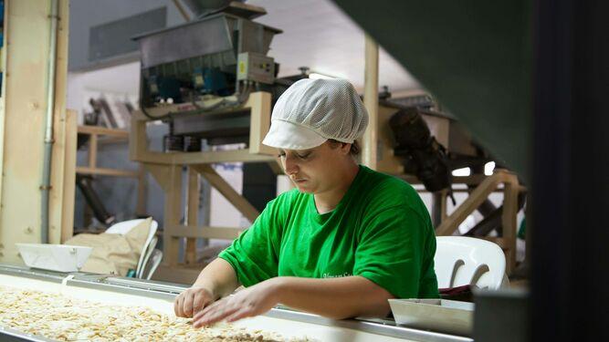 Una trabajadora revisa el fruto seco