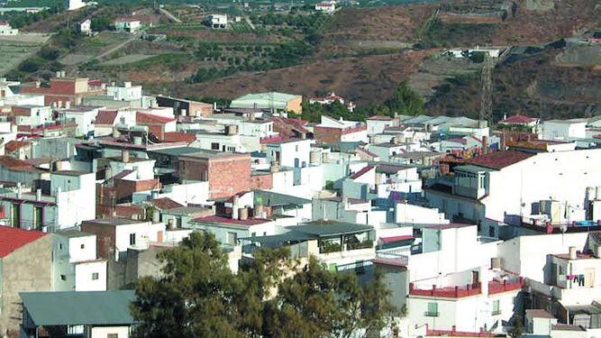 Investigan A Un Joven Por Robar 1 200 Kilos De Aguacate De Granada En Molvizar