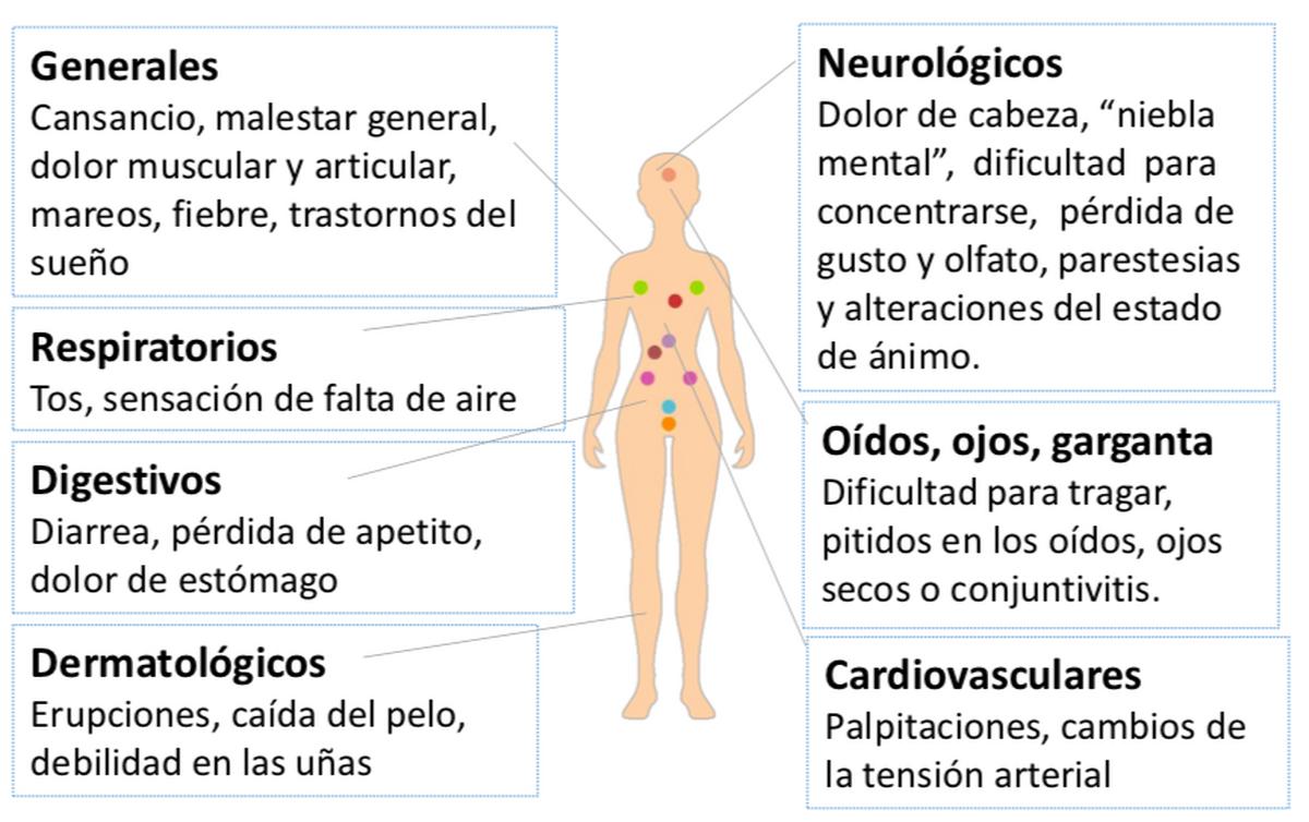 Se ha descrito un gran número de síntomas asociados a la COVID persistente.
